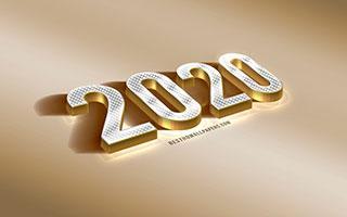 Новый 2020 год